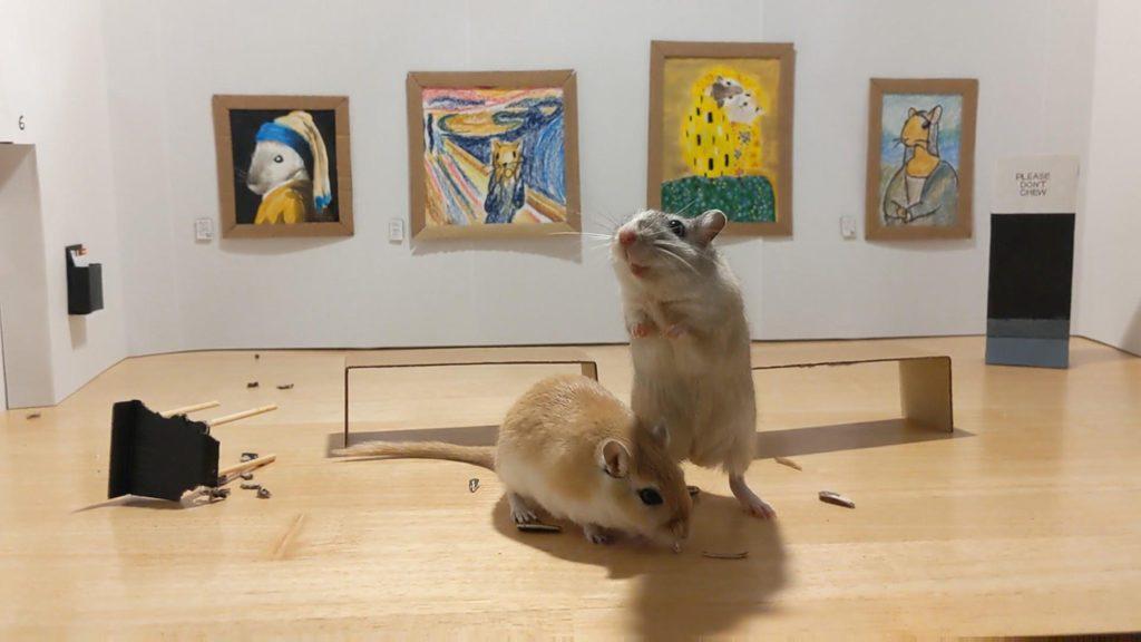Une galerie d'art pour rongeurs